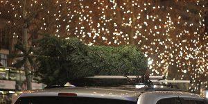 Ziemassvētku egle uz sudrabkrāsas auto jumta, fonā mirdzošas svētku lampiņas