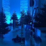 Ar lampiņu virtenēm dekorētas Latvijas egles telpā ar zilu gaismojumu